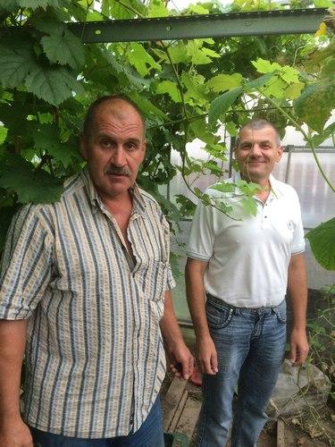 "Клуб ""Александровские виноградари"""